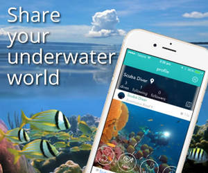 Sharer your underwater world